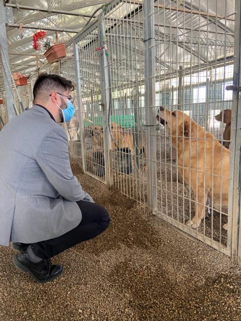 Bruno Góis reafirmou compromisso do BE Sintra com o bem estar animal