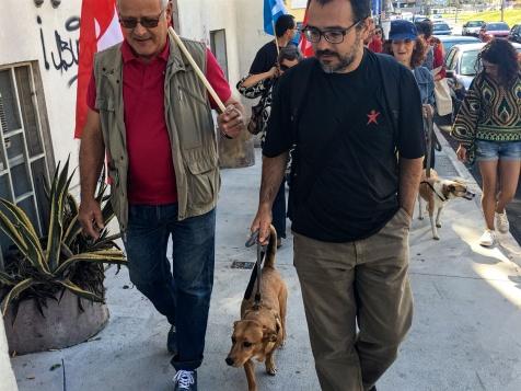 """Carlos Carujo trouxa a cadela Maria Bonita à """"Cãominhada"""""""