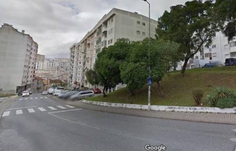 Espaços verdes em Queluz já viram melhores dias