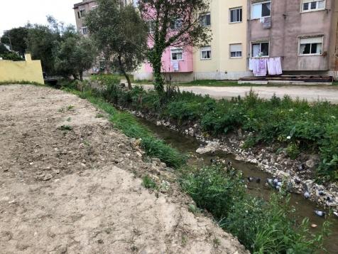 necessária intervenção para regularizar leito da ribeira da Lage. Foto BE Sintra